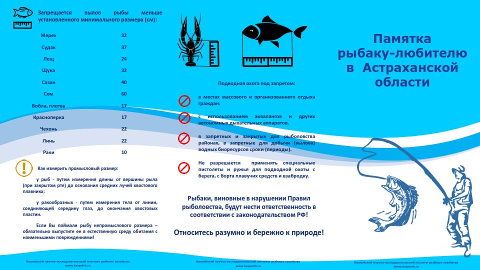 Закон о ловле рыбы в нижегородской области