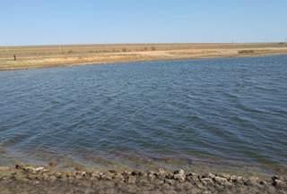 Результаты исследования гипергалинных водоемов Астраханской области