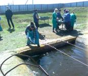 На Александровском ОРЗ начались работы по зарыблению прудов